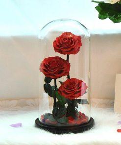 Bouquet De Rose Rouge Éternelle