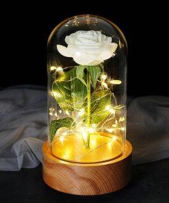 Rose Éternelle Illuminé